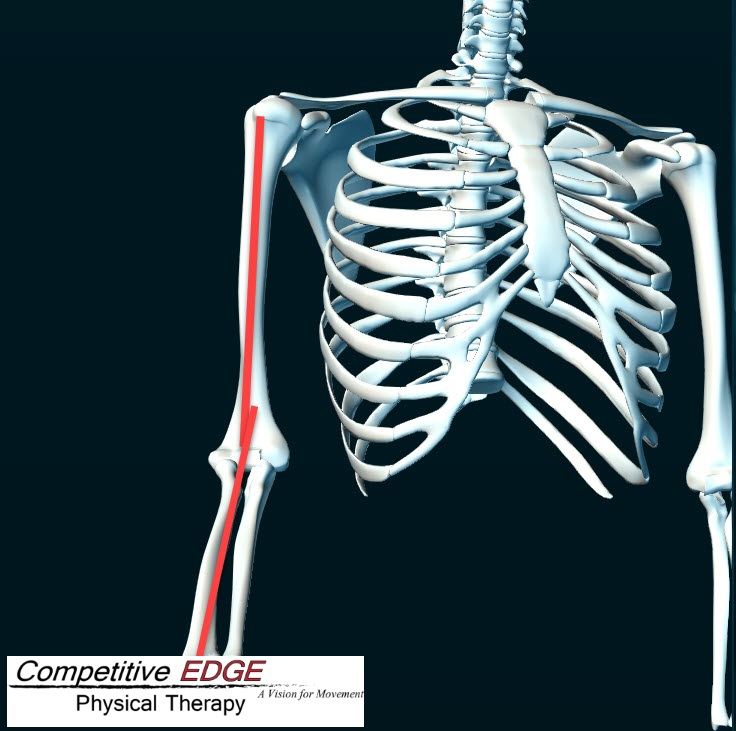 Tommy John Surgery MUCL Depiction