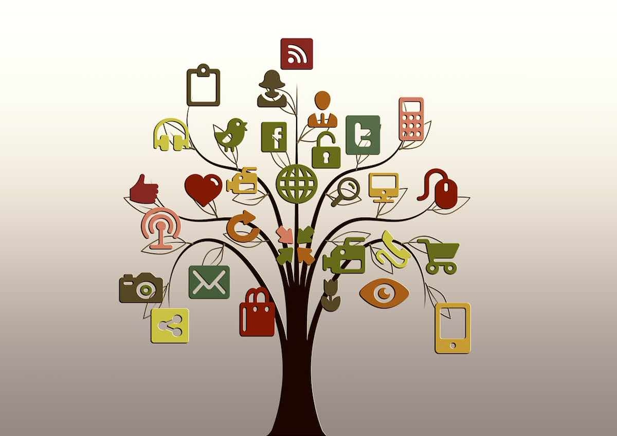 Different types of social media in a tree showing them growing together
